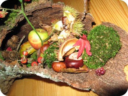 Seizoenstafel Michaelsfeest/ na-zomer/ herfst