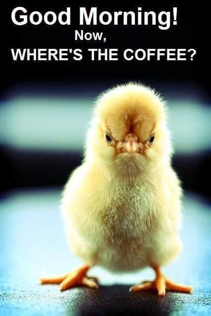 Where's the Coffee? *
