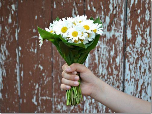Lusi всё возможно: Прощай, весна и здравствуй, лето!