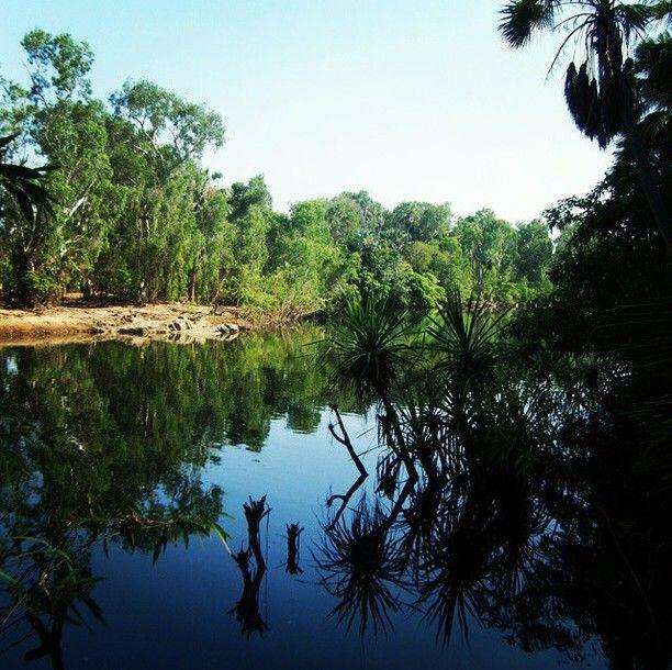 Elsey National Park, Elsey, Australia - Elsey River in Elsey...