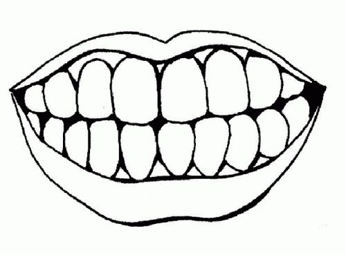 Clip Art Teeth Clip Art 1000 ideas about dentist clipart on pinterest teeth clip coloring pages of lips and tooth clipartteeth