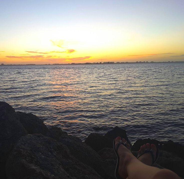 Мексиканский  залив #usaflorida #sarasota #mexicogulf #ilovemywork #ilovetravelling #beautifulnuture #мексиканскийзалив #релакс by ma_shytka