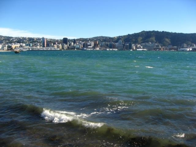 Wellington from Oriental Beach