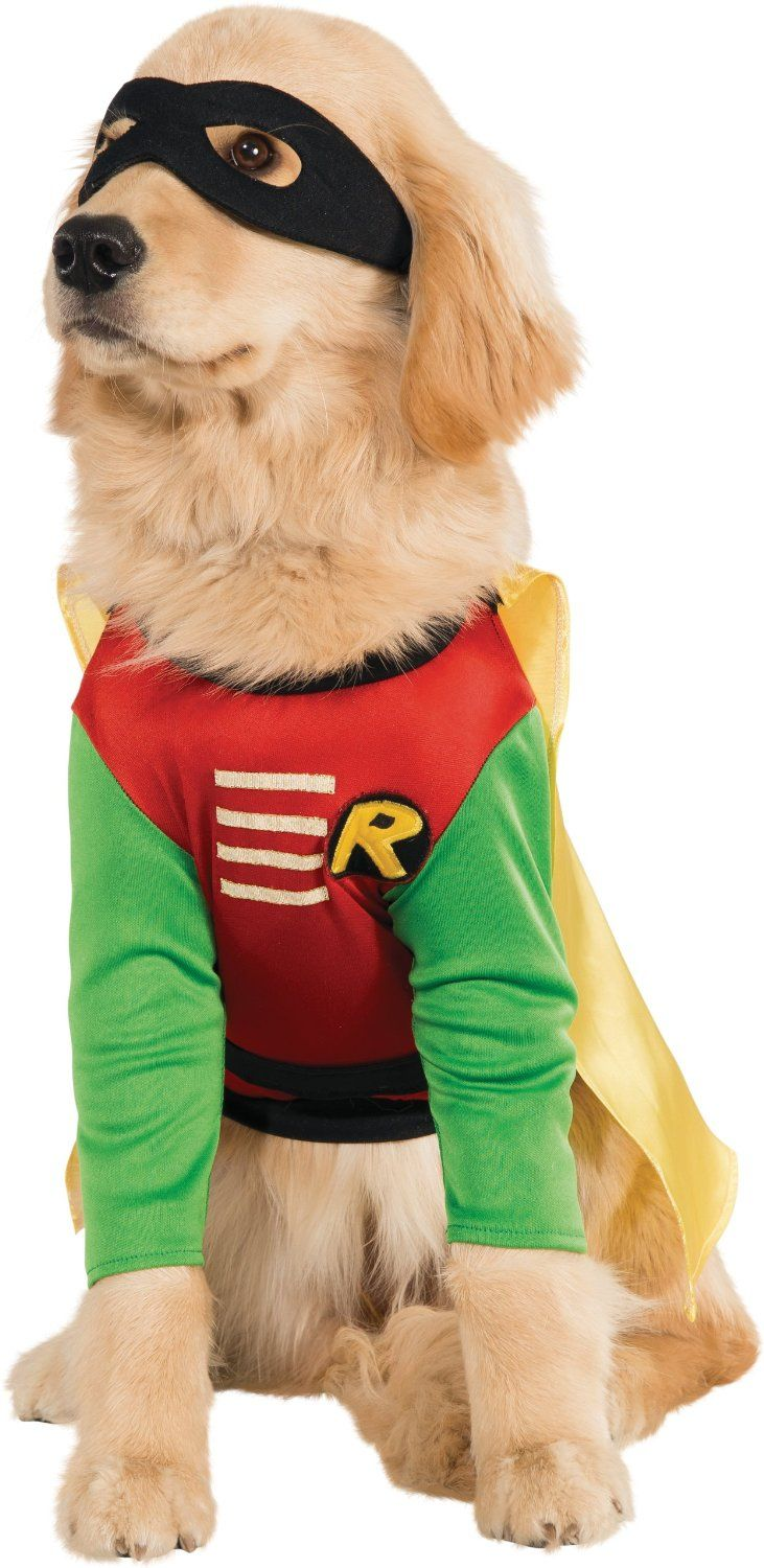 Diy Goofy Costume For Small Dogs