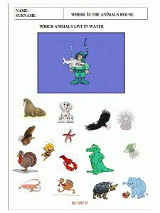 find-the-animals-which-live-in-water-worksheets-for-pre-school-5