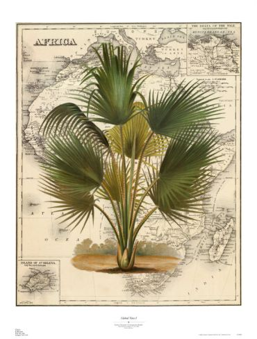 Global View Iby Zachary Alexander British Colonial Decor