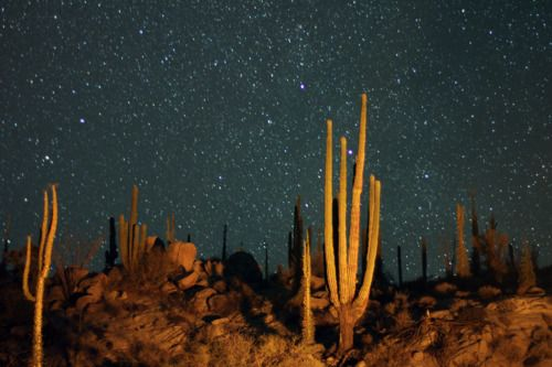 Catavina boulder fields. Baja California: Bouldering Fields, Catavina Bouldering, California, Dos Estamo, Baja Mexico, Natural Spaces, Querida Baja, De Cuenta, Night Sky