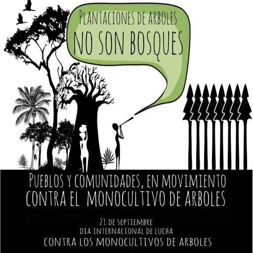 #Monocultivos no son #Bosques