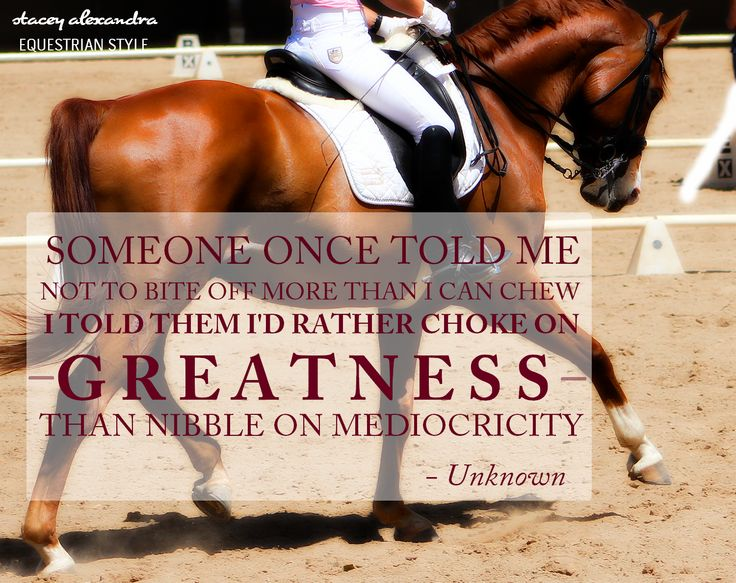 Go for greatness! Equestrian Style & Fashion  www.staceyalexandra.com