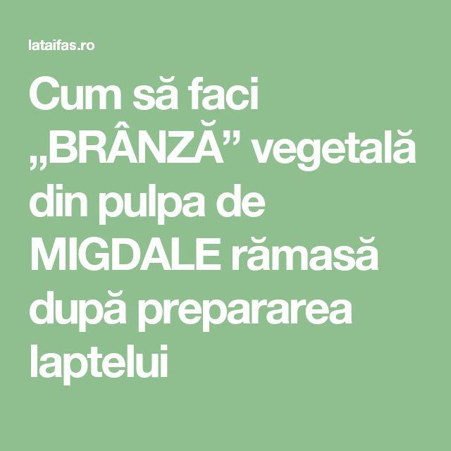 """Cum să faci """"BRÂNZĂ"""" vegetală din pulpa de MIGDALE rămasă după prepararea laptelui"""