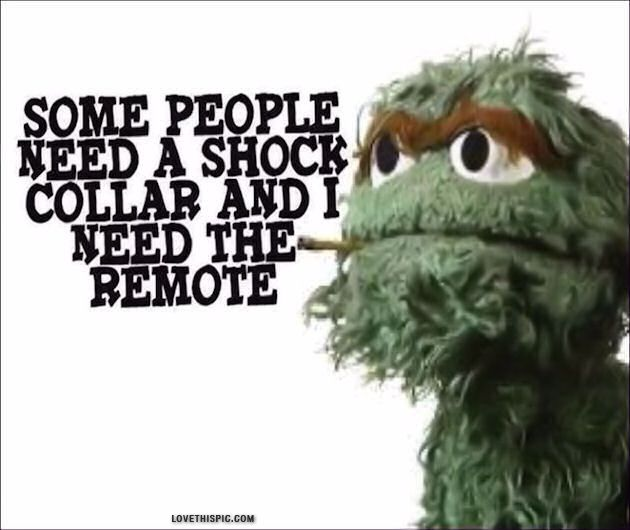 some people funny quotes quote funny quote funny quotes oscar the grouch sesame street AMEN!!!!!!