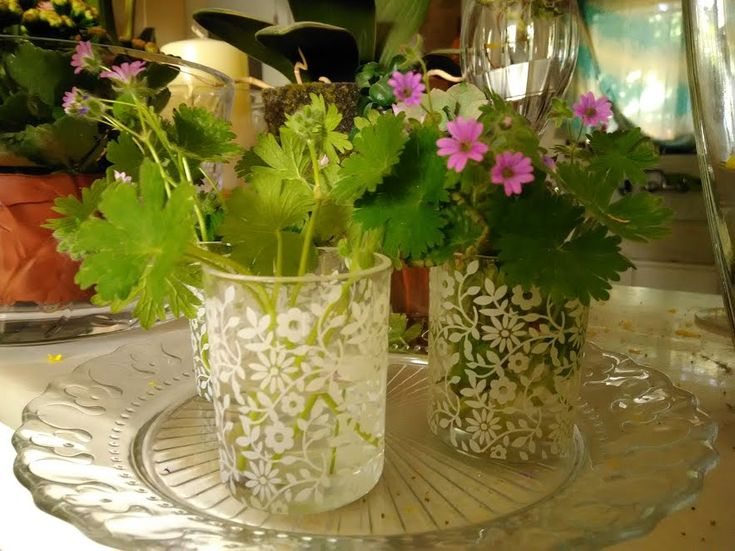 λουλουδια σε σγηνακι  Φωτογραφία - Φωτογραφίες Google