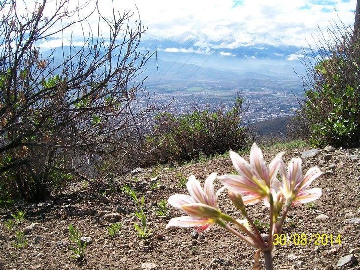 y disfrutar del  valle del Aconcagua a lo lejos!!