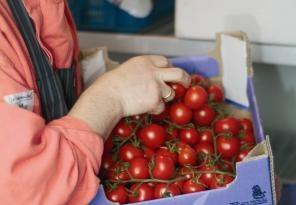 Bionext | Ketenorganisatie voor duurzame, biologische landbouw en voeding