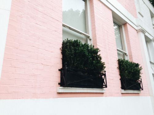 Bakerie — walking around the posh houses in Chelsea, I will...