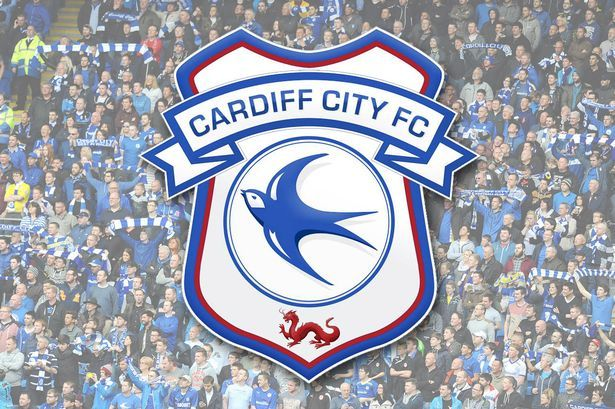Cardiff City's new crest revealed...