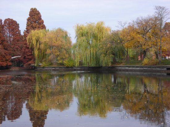 Billede af Herastrau Park