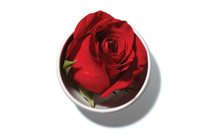 Ești predispusă la coșmaruri? Asează o tufa de trandafiri in ghivechi sau un buchet de trandafiri lângă patul tău. Într-un studiu realizat în Germania, s-a demonstrat, faptul că, femeile car…