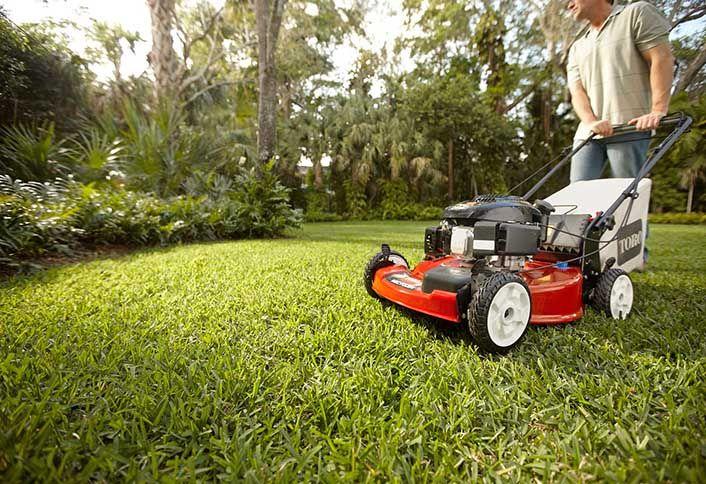 Walk-Behind Lawn Mowers