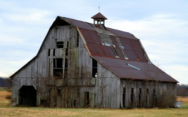 Barns Sheds Country Life