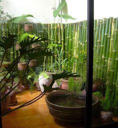 Interior decorating kitchens- bamboo/ bahamas - Google Search