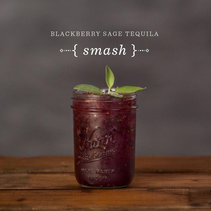 Blackberry Sage Tequila Smash recipe // Mixology Dice