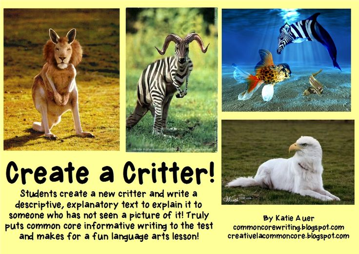 Create a Critter explanatory writing lesson.