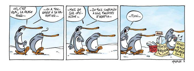 """A l'occasion de la #EarthHour le 19 mars prochain, Bruno Madaule publiera chaque jour un nouveau strip de ses gags des """"Givrés"""" à propos des conséquences du réchauffement climatique sur la banquise de ses pingouins fêlés. http://sandawe.com/fr/projets/les-givres/blog/2016/02/23/earthhour-j-22-27-2-2016-gag-7-des-givrs"""