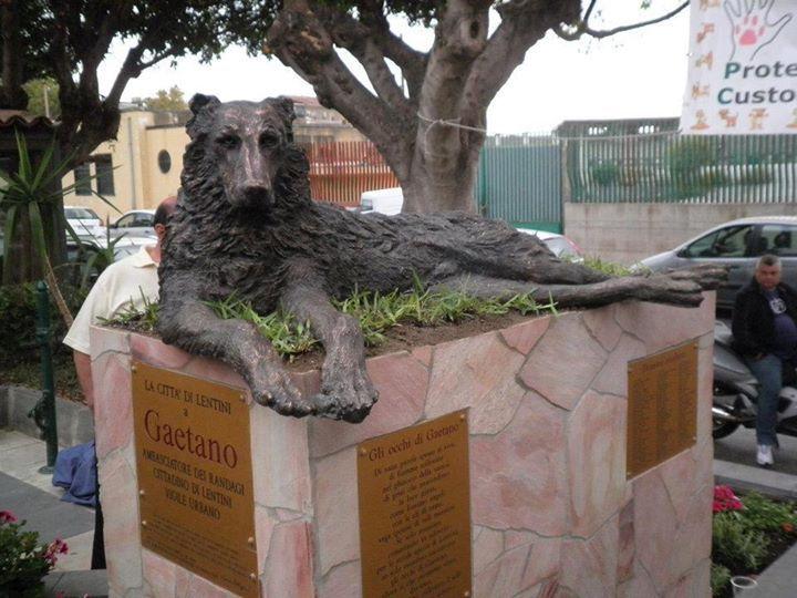 Monumento a Gaetano il cane vissuto libero ed amato da tutti gli abitanti di Lentini (SR).