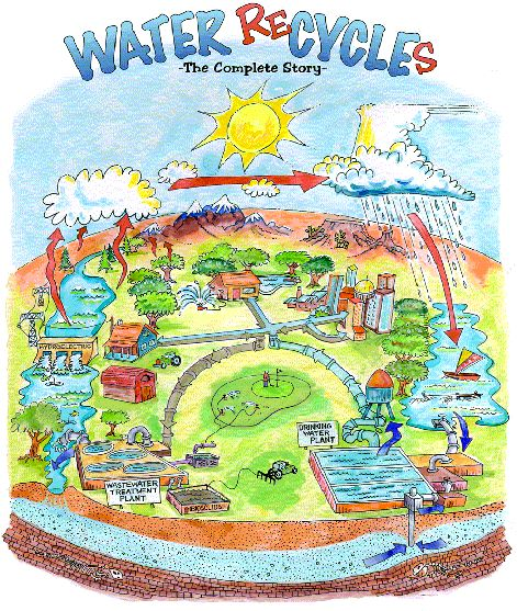 CWEA & Water Quality  Learn about water quality & the wastewater industry  The Water Cycle Model
