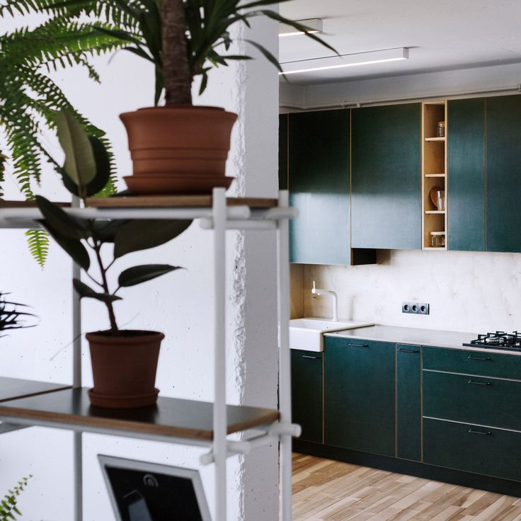 A kitchen with forest-green plywood cabinets and a shelving unit filled with plants add colour to this simple apartment by interior designerRoman Shpelyk