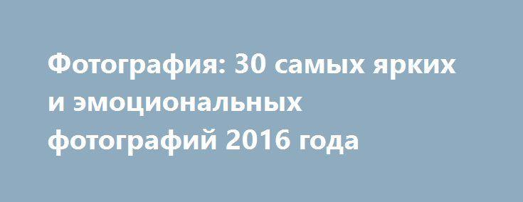 Фотография: 30 самых ярких и эмоциональных фотографий 2016 года http://kleinburd.ru/news/fotografiya-30-samyx-yarkix-i-emocionalnyx-fotografij-2016-goda/  Присоединяйтесь к нам в Facebook и ВКонтакте Лучшие из лучших за 12 месяцев. 2016 год был полон самых разнообразных событий, а фотографы а разных уголках мира старались их задокументировать. И стоит отметить, что у получалось у некоторых просто удивительно замечательно. Выбрать самые-самые-самые фотографии года было очень сложно, но мы…