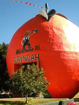 Only in Australia: the Big Orange Gayndah, Queensland