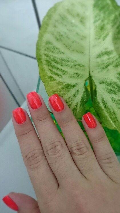 Atractivo Uñas Naranja Beverly Ma Bandera - Ideas de Pintar de Uñas ...