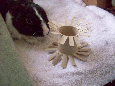 home made bunny toys