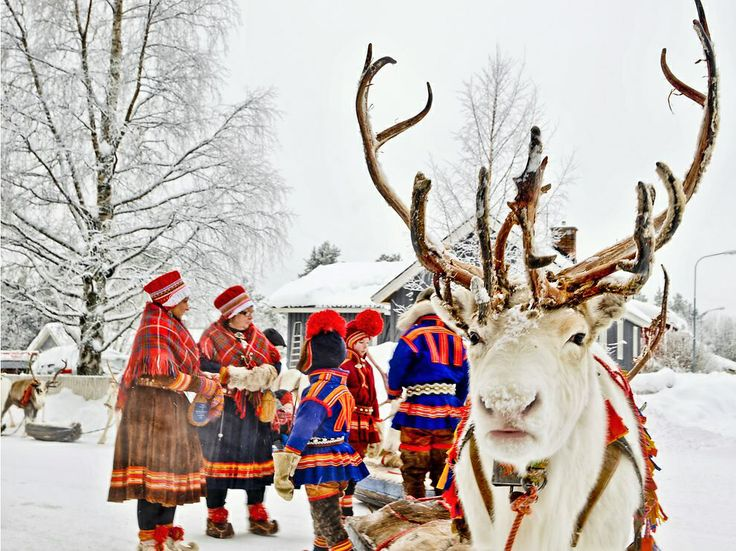Reindeer and Sami in traditional wear.