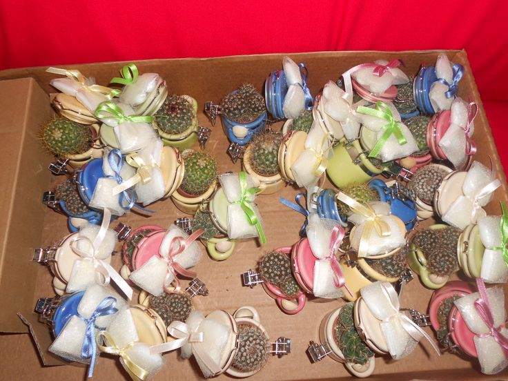 una scatola di barattolini