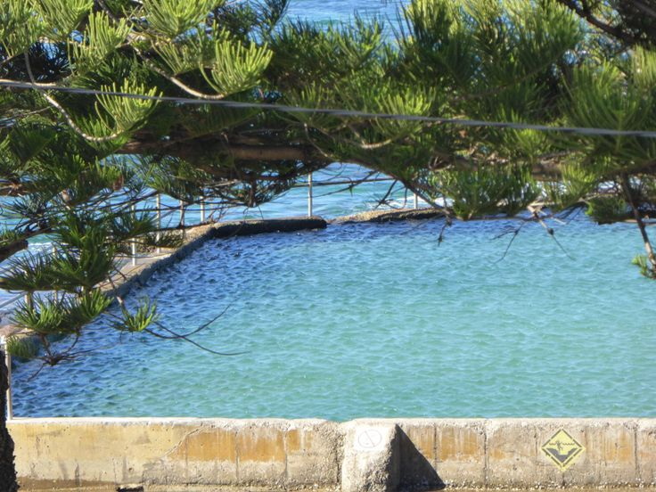 74 Best Outdoor Swimming Pools In Australia Images On Pinterest Pools Swiming Pool And
