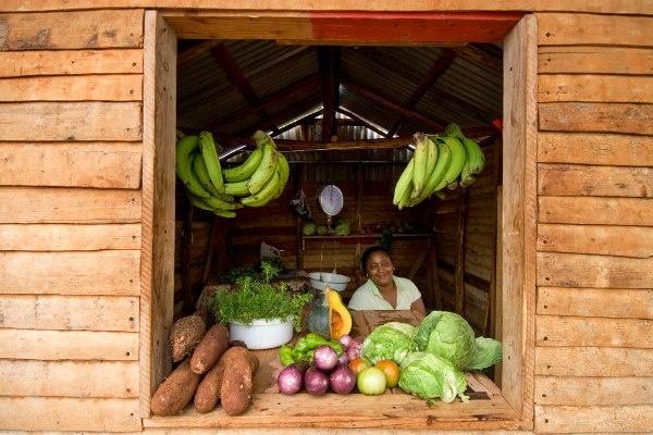 405 Best Dominican Republic Mi Tierra Images On Pinterest