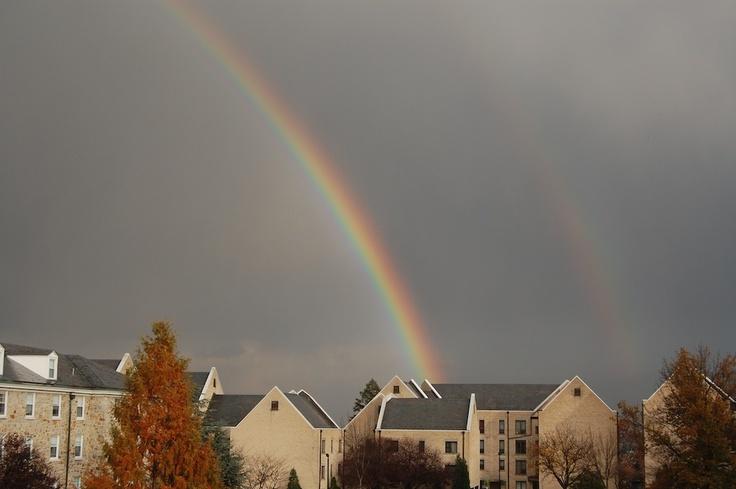#rainbow, mount st marys university