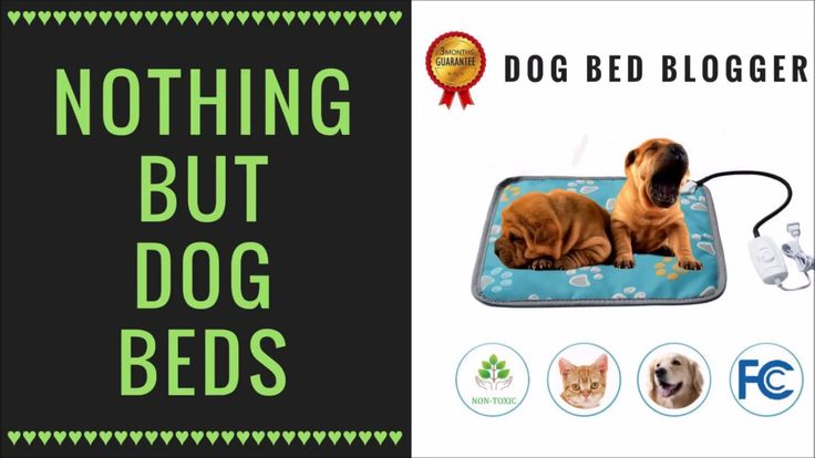 If you need help finding the perfect dog bed for your fur-baby, you're in the right place.  My blog covers waterproof dog beds, orthopedic dog beds, cooling dog beds, heated dog beds, reviews, best of and more!  Stop by:  http://www.dogbedblogger.com