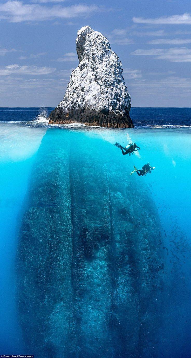 Der Taucher nimmt atemberaubende Bilder der Wildtiere auf, die in der Nähe von 650 Fuß Felsen lauern   – Diving