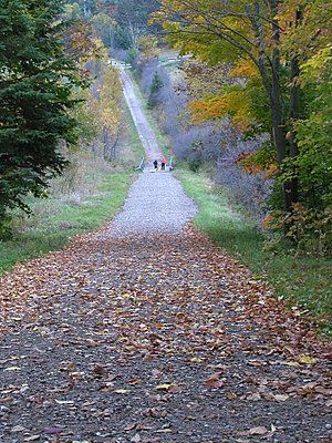 Hiking trail in the fall, Gatineau Park, Quebec