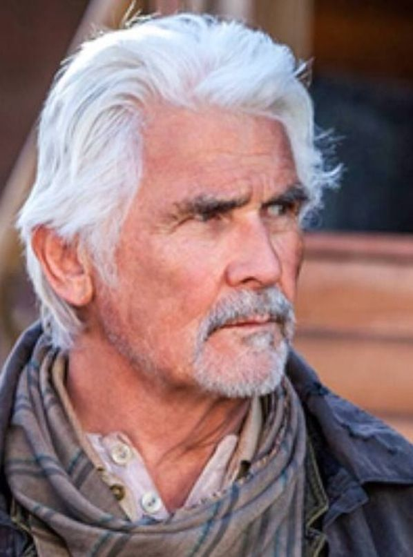 Charles Brolin, Handsome Gray Haired Man.