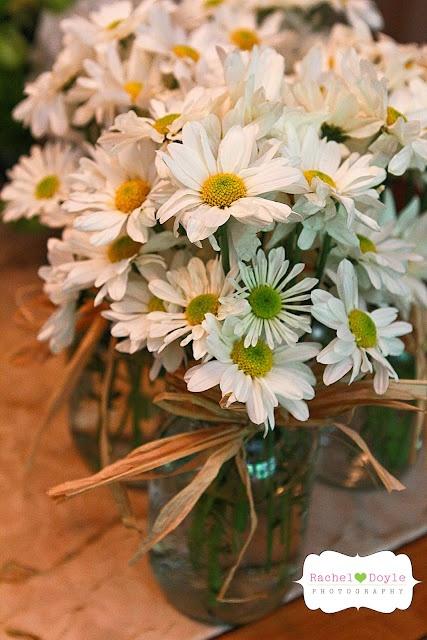 daisies!!