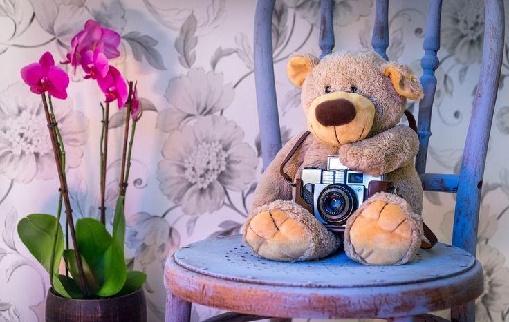 Cómo Enseñar Fotografía A Los Niños (Sin Aburrirles) http://www.blogdelfotografo.com/ensenar-fotografia-ninos/