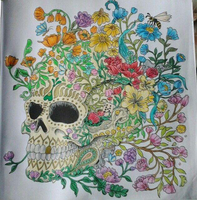 Kerby Roasanes Imagimorphia Coloring BooksAdult ColoringColouringSkull