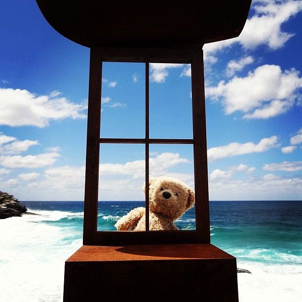 The looking glass window. For more of #teddy's #adventures see her blog www.teddybearlife.com #teddy #bear #sea #sculpture #sculpturebythesea #art #bondi #ocean #view #teddybear #scenery #socute #softtoy