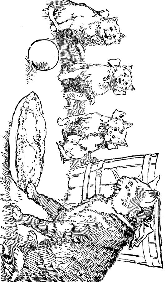 http://karenswhimsy.com/public-domain-images/cat-coloring-pages/cat-coloring-pages-5.shtm