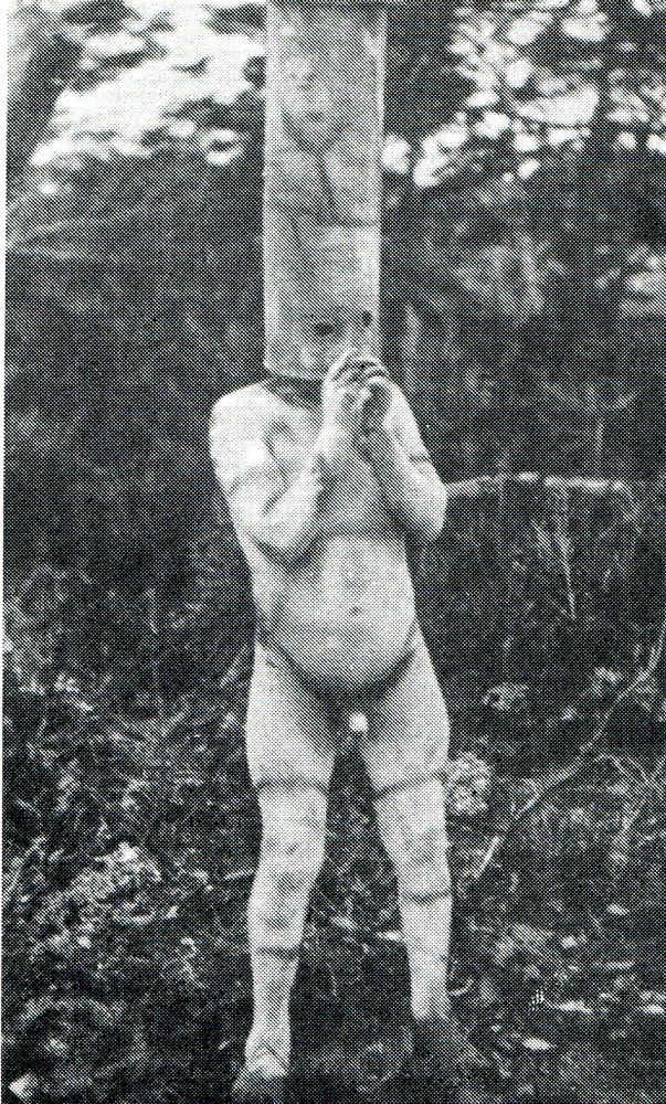 Espíritu del Yinciháua con máscara cilíndrica y pintura corporal. Fotografía de…